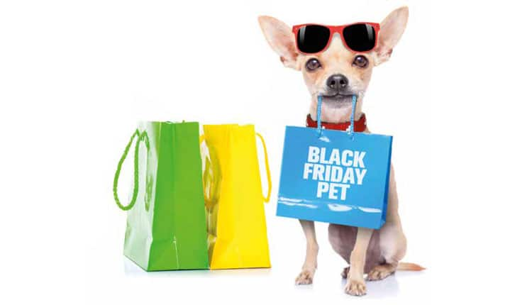 BLACK FRIDAY no mercado pet Será que pega?