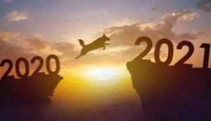 Desafios e perspectivas do mercado pet para 2021