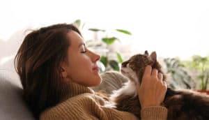 Cresce 27% o número de gatos nos lares paulistas durante a pandemia