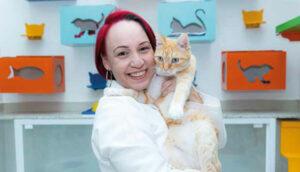 Médica-veterinária desvenda os principais mitos do universo felino